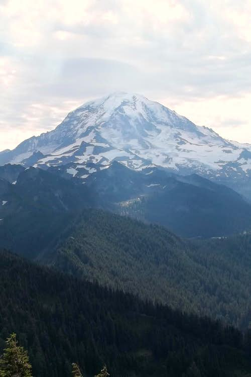 Rainier from Tolmie