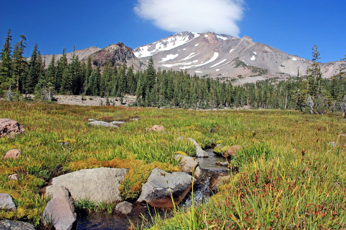 Mt shasta from panther meadow photos diagrams topos for The meado