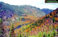 Hautes-Gorges l'automne