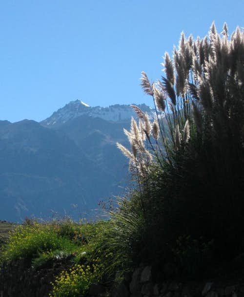 Cerro Bombaya