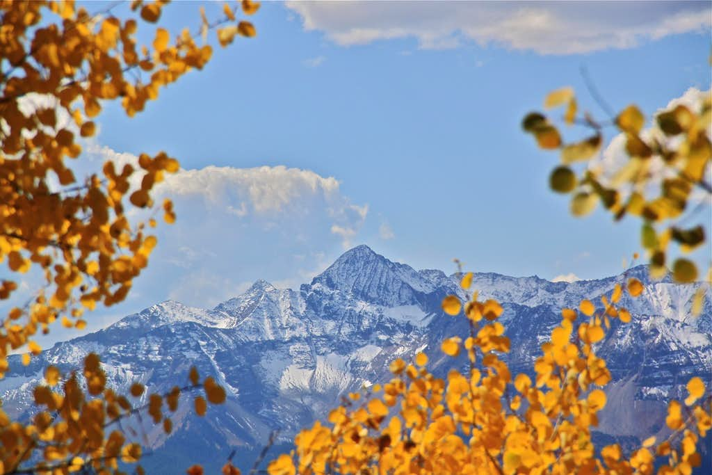 Wilson peak framed in fall colors