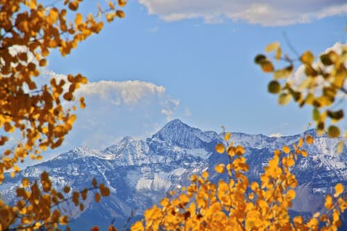 Wilson peak framed in fall colors