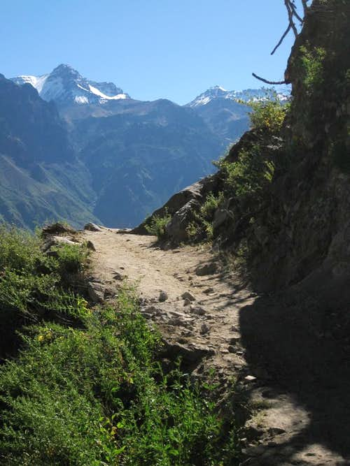 High on the Colca Canyon trail