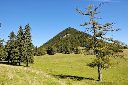 Mt. Schober
