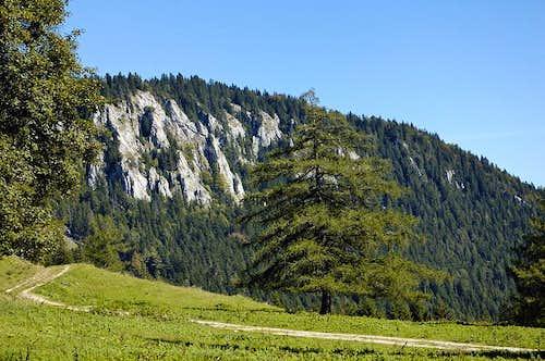 Mt. Öhler