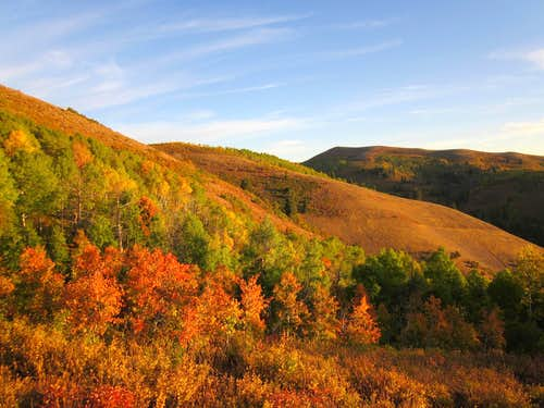 Big Mountain fall colors