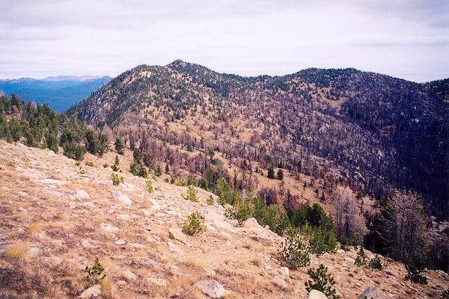 Coleman Peak from Reed Peak...