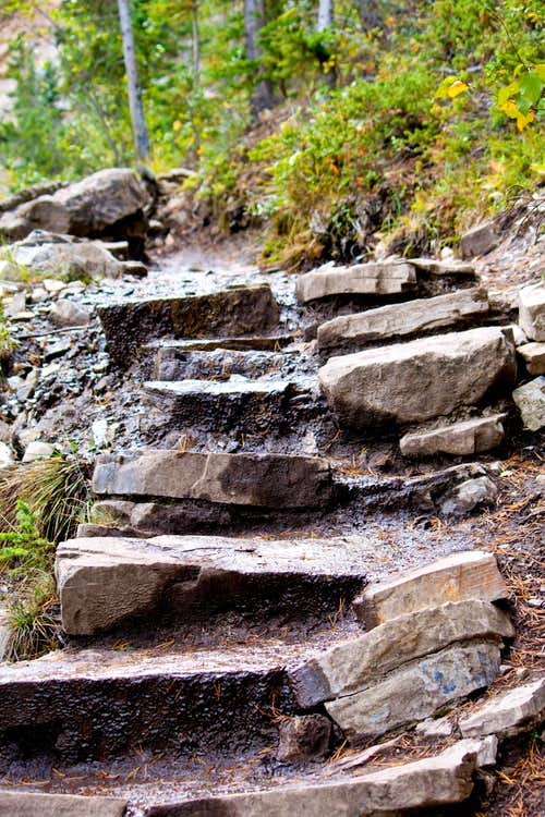 Steps Along Grassi Trail