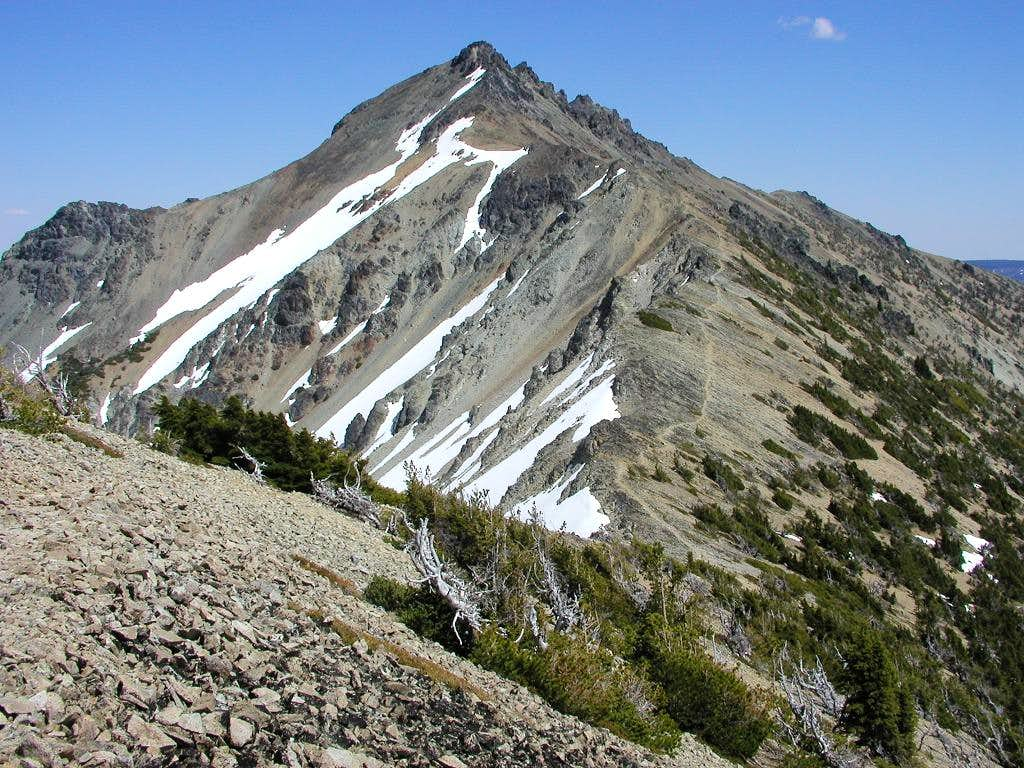 Mt. Aix from Nelson Ridge....