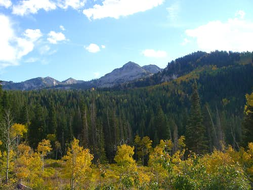 Upper Big Cottonwood