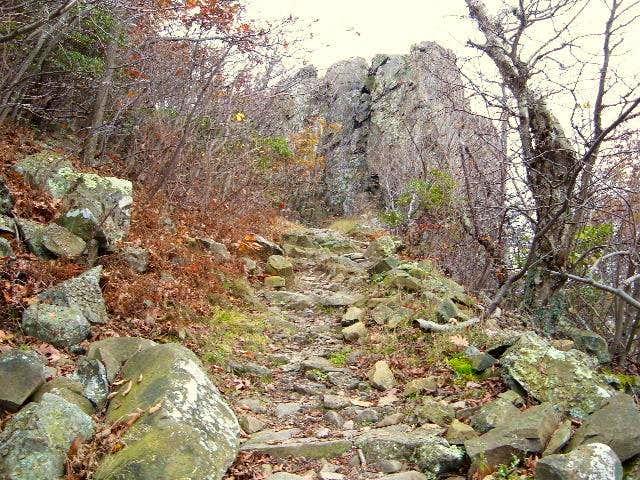 I always climb this rock...