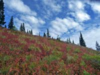 Autumn Arrives on Granite Mountain