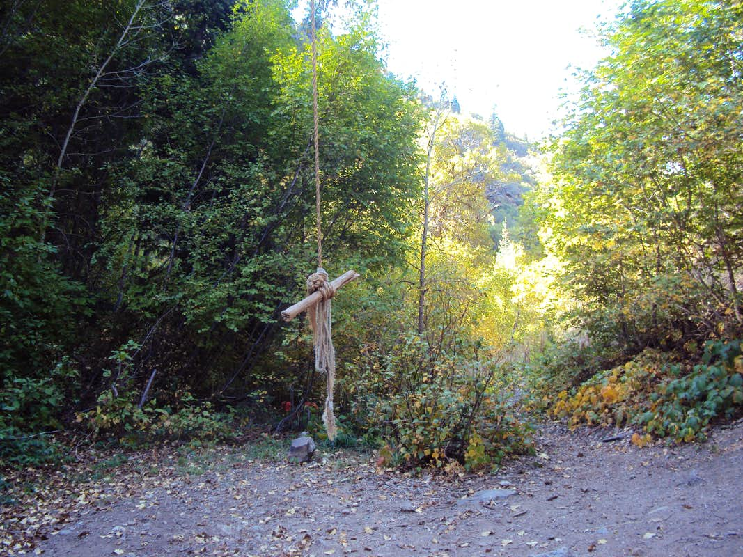 Rope swing photos diagrams topos summitpost for Rope swing plans