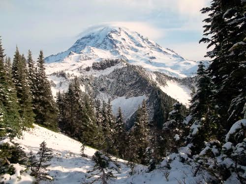 Mount Rainier from the ridge