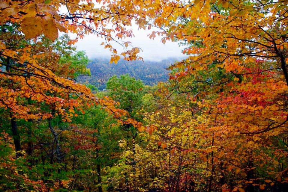 Fall In West Virginia  Photos Diagrams Amp Topos  SummitPost