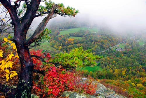 Fall Colors on the Seneca Rocks Trail, West Virginia
