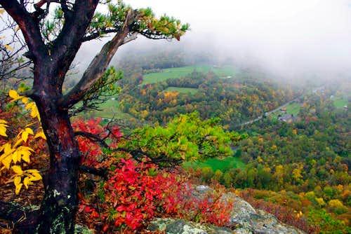 Fall Colors on the Seneca Rocks Trail, West Virginia