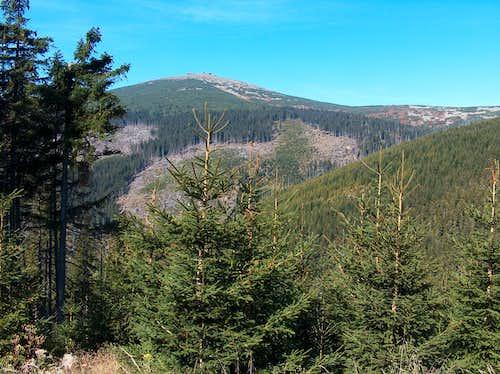 Open views to to Sněžka over the  Lví důl valley