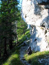 Trail South of Poludnica s Summit