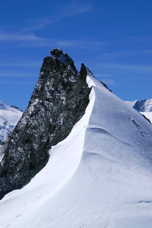Rimpfischhorn north ridge