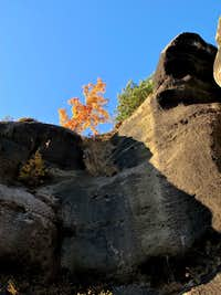 Sandstone and autumn colors on Mount Oybin
