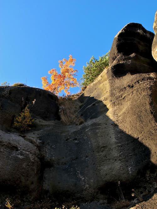 Sandstone and autumn colors on Mount Oybin