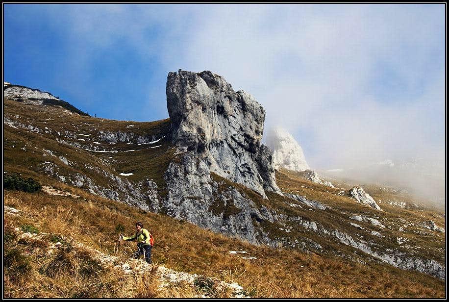 Towards Skrbina