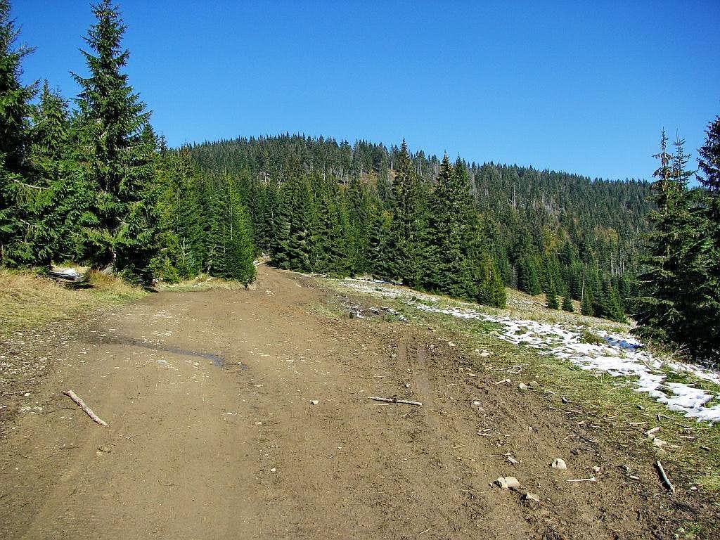 View toward Turbacz top