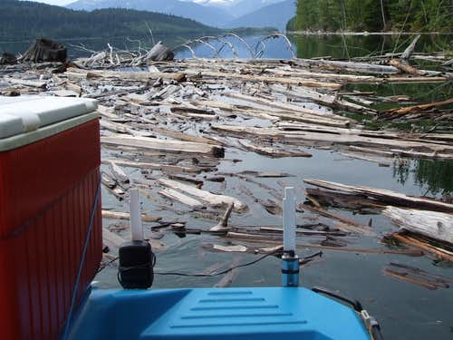 Paddleboat pushing through debris.
