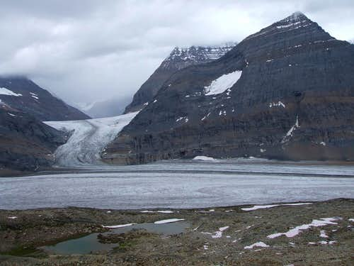 Clemenceau icefield