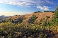 Hills of west Marin