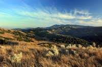 Mt. Tam from San Geronimo Ridge