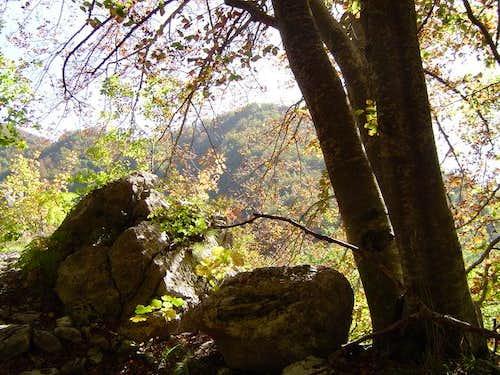 Climbing Monte Mai in a...
