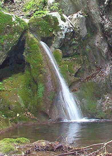 A nice waterfall in the...
