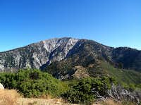 View of Mt Baldy