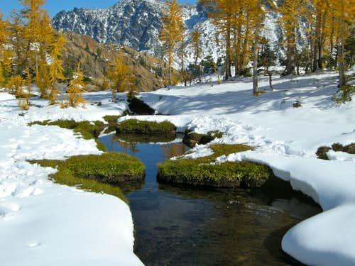 Larches Headlight Creek Basin