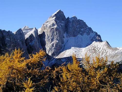 Jalovec in autumn