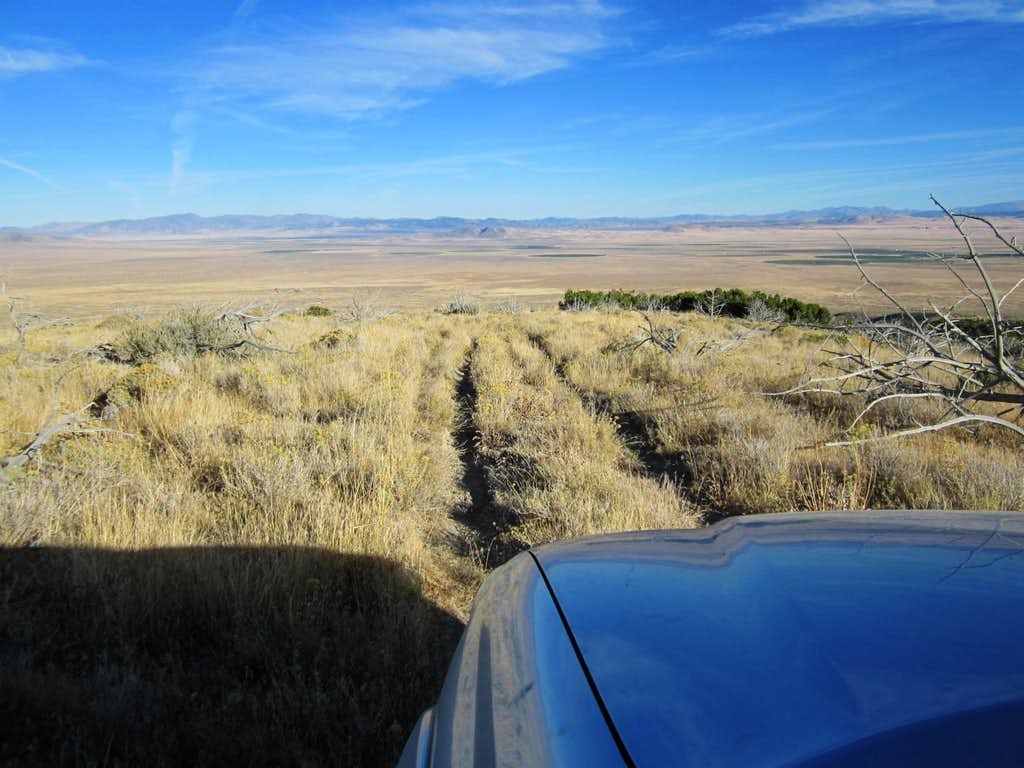 The jeep track
