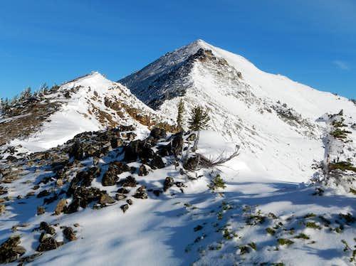 Nelson Ridge
