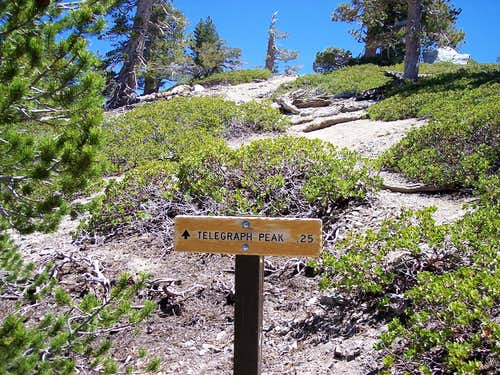 A sign shows that telegraph peak is .25 miles up from the trail