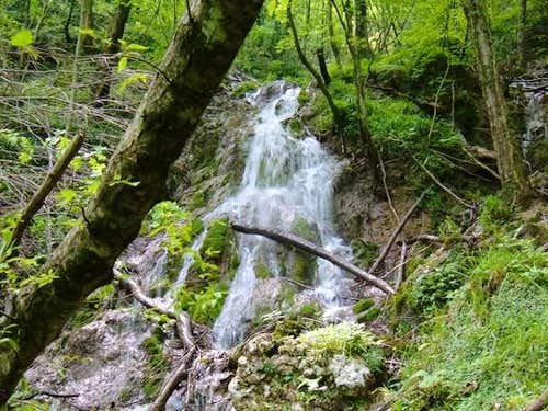 A water fall in the wood of...