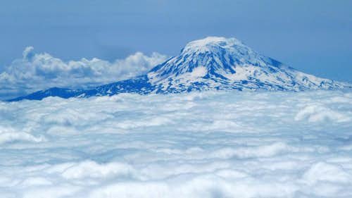 Mount Adams above the Clouds