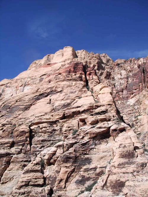 Peyote Power, 5.9