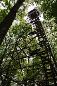 The Firetower