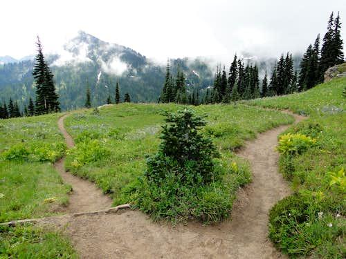 Trail spur to Tahtlum Peak