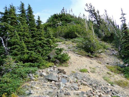 Bootpath/trail nearing Tahtlum Peak.