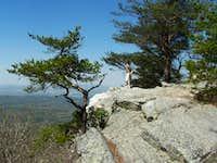 Great Alabama View