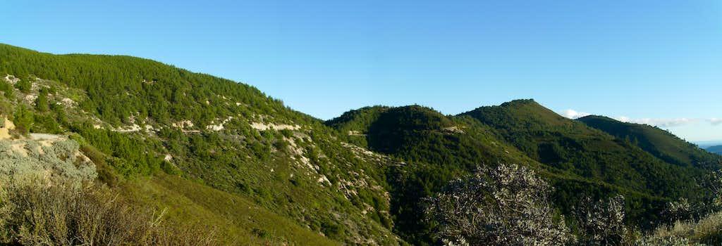 Cuesta Ridge