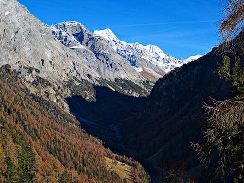 Autumn in Zebrù valley