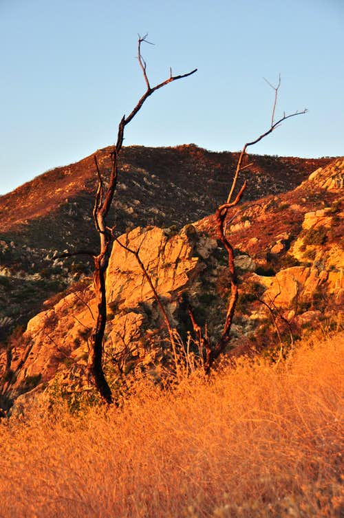 Gibraltar Rock at sunset